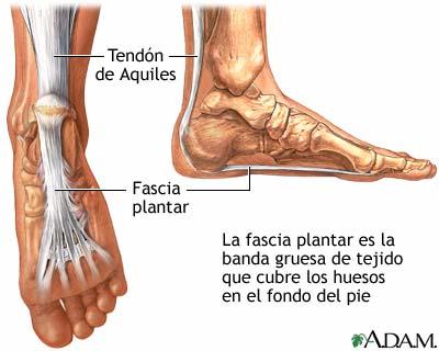 Montañismo y Exploración » Un dolor común: la planta del pie