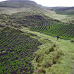 Espectaculares sembríos de papas a 4000 mil metros. Si retrocedemos mil años atrás la vista sería exactamente igual a esta. Foto: Sergio Ramírez Carrascal