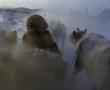 Expedición Frío Extremo