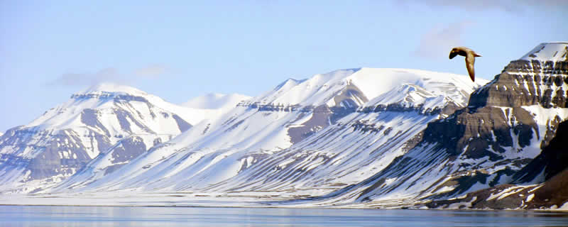 svalbard-solo-01