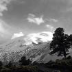 El Popocatépetl visto desde Tlamacas en 1975. Se nota el glaciar y una cueva de hielo que se fue formando poco a poco.